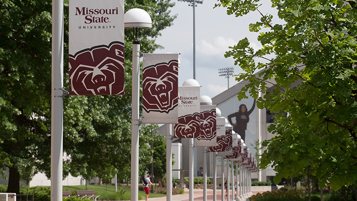 A row of light poles with banners showing the Missouri State logo and bear head