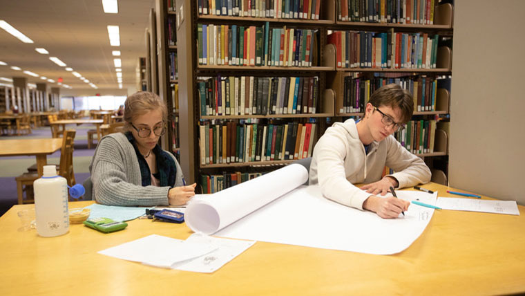 Students using Meyer Library to study.