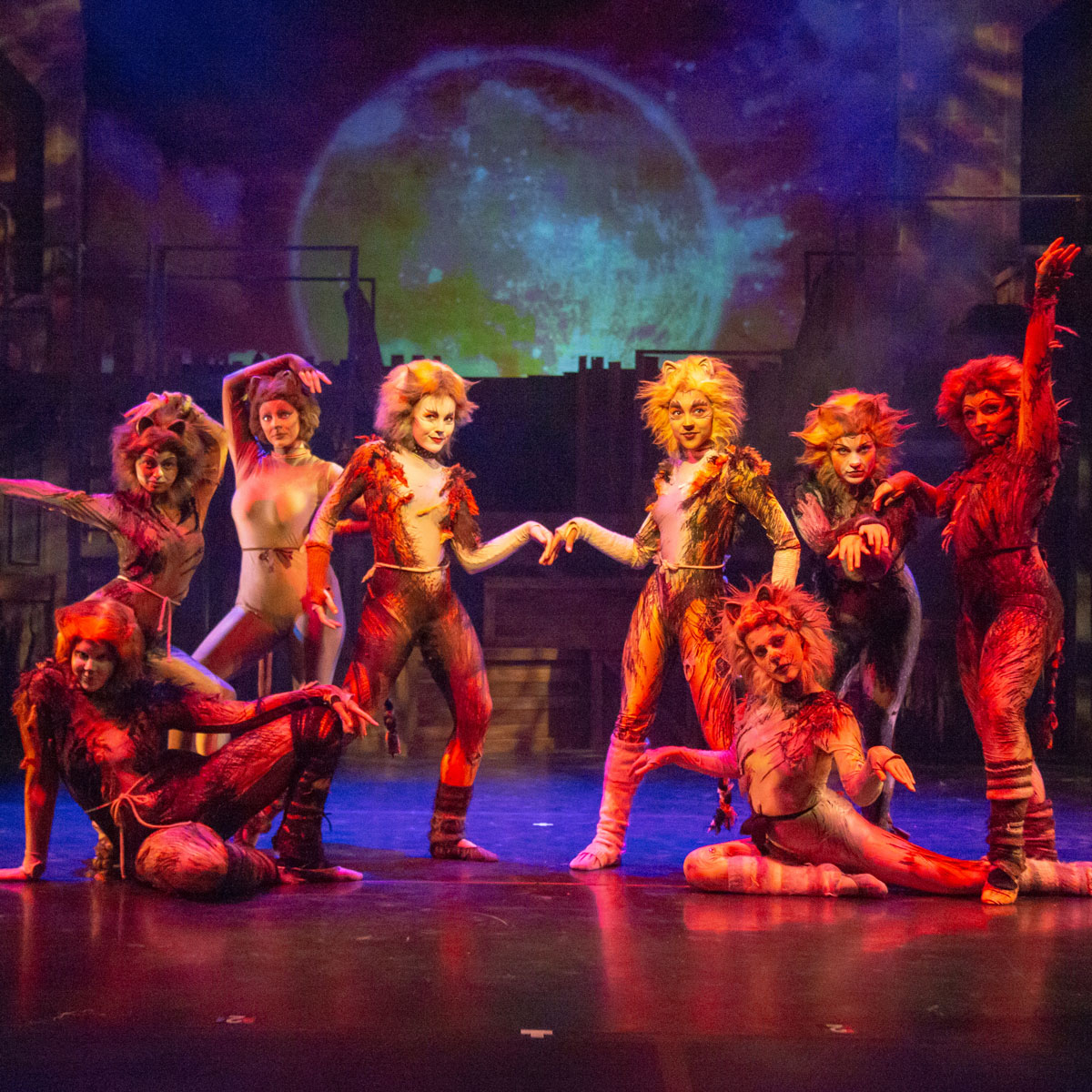 MSU cast of 'Cats' strike a pose on stage.