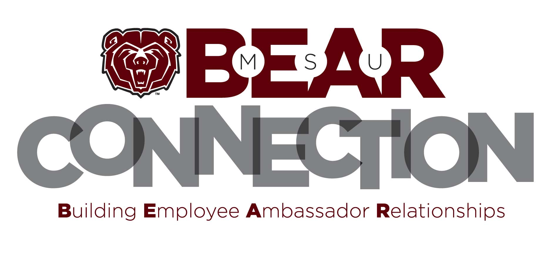 Bear Connection Logo
